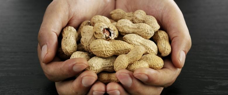 La production de Viaskin Peanut, à la hauteur pour satisfaire les premières demandes !